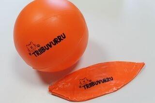 Rannapall Triibuvurru
